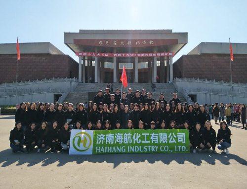 海航实业有限公司参加台儿庄古城之旅